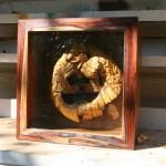 The forces of nature created this wonderful transformation from an ordinary jack-o-lantern when he was left out on a balcony over the winter. Shadow box is made from cocobolo and hickory.